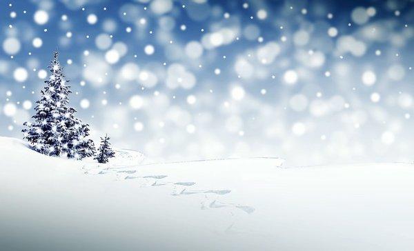 christmas-3864552_1280.jpg